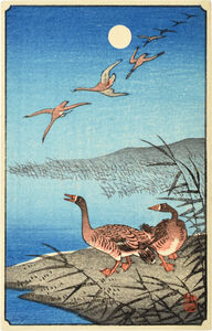 Ohara Koson, 'White-fronted Geese Among Reeds and in Flight', ca. 1930s