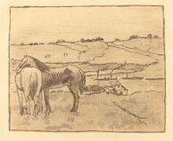 Horses in the Meadow (Chevaux dans la prairie)