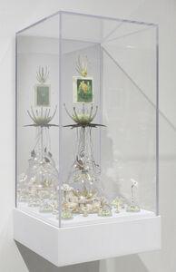 Dario Robleto, 'Study for Moon Flowers', 2016
