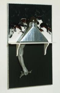Edward and Nancy Reddin Kienholz, 'Bound Duck Black', 1991
