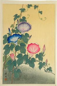Ohara Koson, 'Morning Glory in Full Bloom', ca. 1925