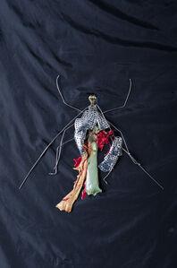Hyungsub Shin, 'Insect', 2005