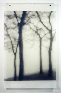 Jeri Eisenberg, 'Lakeshore, Chicago', 2004
