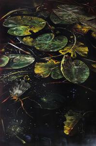 Helena Parada-Kim, 'Pond lilies (left panel)', 2018