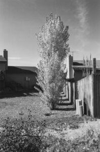 Robert Adams (b.1937), 'Arvada, Colorado', 1984-1987
