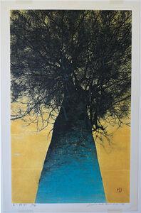 Joichi Hoshi, 'High Treetop (A)', 1976