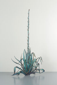 Claudia Martínez Garay, 'Agave Americana about to bloom,', 2020