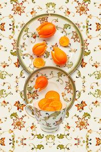 JP Terlizzi, 'Wedgwood Oberon with Mandarinquat', 2020