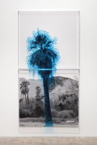 Charles Gaines, 'Numbers and Trees: Palm Canyon, Palm Trees Series 2, Tree #1, Cahuilla', 2019