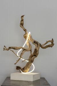 Lisa Schulte, 'Untitled Wood Series #4', 2014