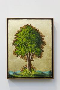 Peter Daverington, 'Portrait of a Tree #3', 2017