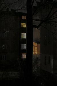 Boris Savelev, 'night tree'