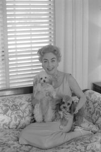 Willy Rizzo, 'Joan Crawford with her dogs, Beverly Hills', 1959