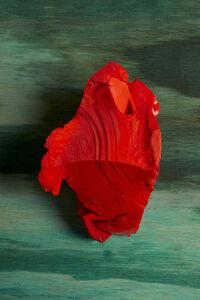 Lorenzo Vitturi, 'Red Cotisso, Green Pigment, Wood in Arìn', 2019
