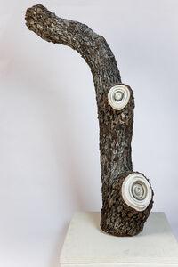 Cade Bradshaw, 'PULP', 2006