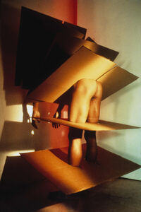 Jimmy DeSana, 'Cardboard', 1985