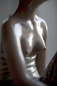 Dana Hoey, 'Dutch Torso', 2011