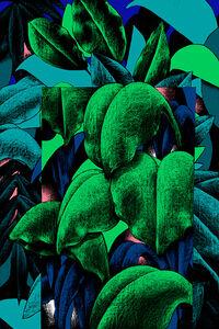 Julien Colombier, 'Leaf', 2020
