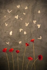 CANDELARIA MAGLIANO, 'Mariposas (Butterflies)'
