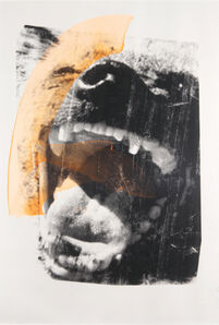 James Baker, 'Hyena Scream', 2008