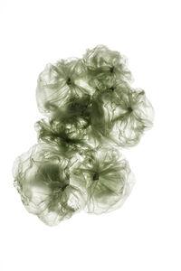 Zelda Zinn, 'Perpetual Plastic #4319', 2019