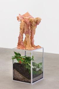 Juliana Cerqueira Leite, 'Quadrúpede [Quadruped]', 2020