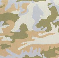Andy Warhol, 'Camouflage (FS II.407)', 1986