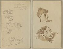 Five Sheep; Head of a Woman and Head of a Bearded Man [recto]
