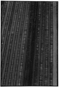 Zoe Leonard, 'Untitled Aerial', 1986