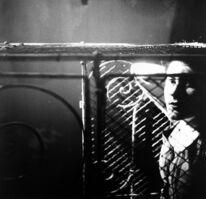 Saul Leiter, 'Kathy', 1952