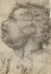 Baccio della Porta, called Fra Bartolommeo, 'Head of a Child, an Angel and a Hand (recto), Male Figure (verso)', 1510-1515