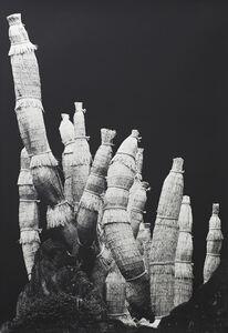 Bianca Sforni, 'From Cipango V', 2003