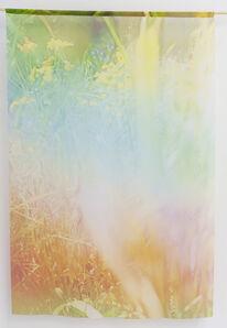 Jordan Sullivan, 'Echoes', 2017