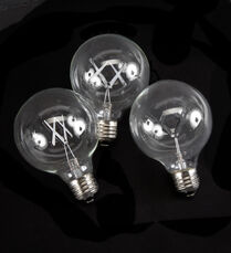 The Standard Lightbulbs