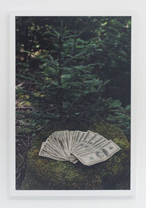 Andrew Jeffrey Wright, 'Money on mossy rock in vermont', 2005