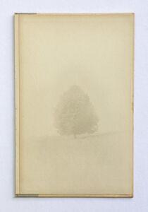 Jefferson Hayman, 'Memory of a Landscape', 2019