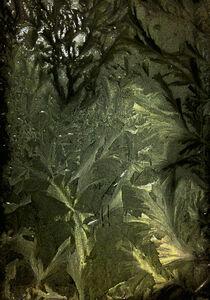 Xie Hong Dong, 'Garden Path 01 園境 01', 2015