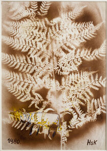 Hans Krüsi, 'Untitled (Brown Fern with Cow)', 1980
