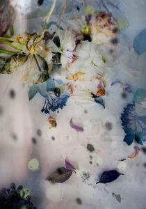 Isabelle Menin, 'Petites Natures #17', 2015