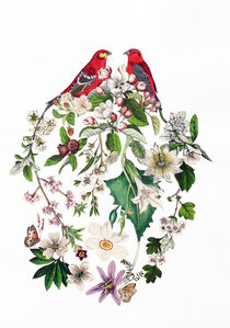 Amy Ross, 'Lovebirds 3', 2016