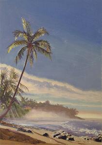 Kim Do, 'Costa Rican Palm Sunrise', 2001