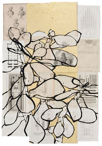Robert Kushner, 'Jade Plant', 2016