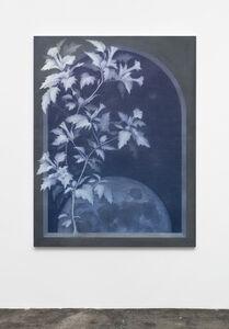 Theodora Allen, 'Cosmic Garden VII', 2018