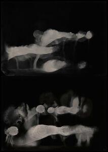 Nadezda Nikolova-Kratzer, 'Elemental Forms, Landscape no. 23 (Diptych - Conflagration Smoke)', 2018