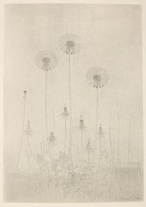 Gunnar Norrman, 'Dunbollar (Puffballs)'