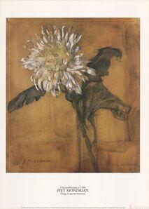 Piet Mondrian, 'Chrysanthemum', 1996