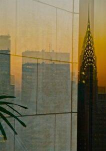 Heinz Lechner, 'new york reflections', 2010