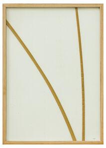 herman de vries, 'part, no title 1', 1993