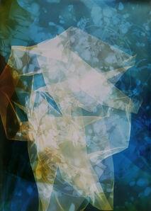 Bryan Graf, 'Sun Room Canopy Debris IV', 2016