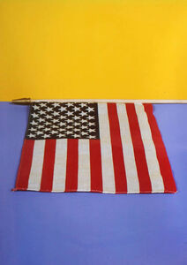 Neil Winokur, 'Flag (Ann Magnuson)', 1985